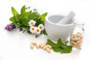 Nature's Antiviral Defense
